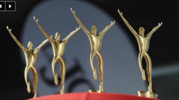 BT-Wahl zum Seeländer Team des Jahres 2017